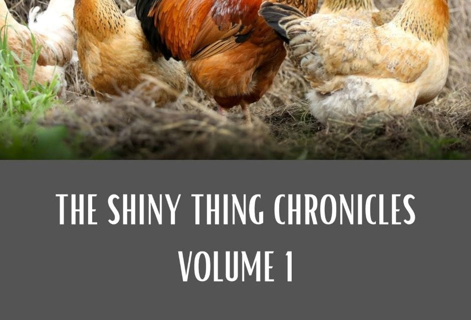 Shiny Thing Chronicles, Chapter 8: The Armor of Light