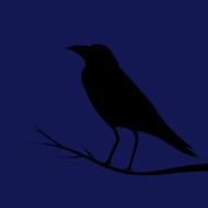 Azhure Raven